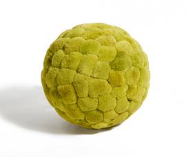 美国 Roost  绿色泡沫香蒲球摆件(大号)
